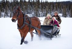 This is Norway but i'll go to whatever snowy place I can get an awesome sleigh ride.