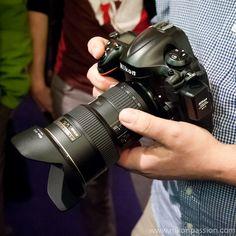 Nikon D800, D800E et D4 : mises à jour firmware 1.01