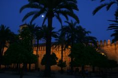 Alcázar de los Reyes Cristianos. Córdoba
