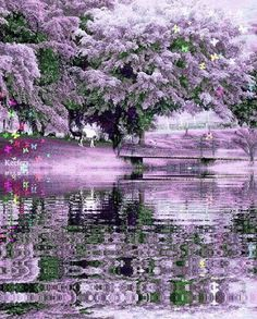 everyday a different color, beautiful gifs, soft goth, nature. Gifs, Beautiful Gif, Beautiful Pictures, Gif Bonito, Foto Gif, Black And White Landscape, Water Reflections, Gif Animé, Animated Gif