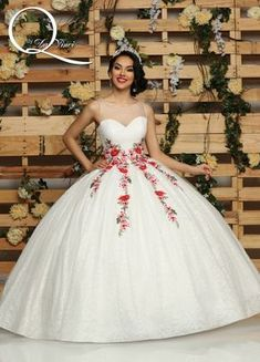 13abfeac827a Q by DaVinci Style # 80418 Xv Dresses, Puffy Dresses, Bella Dresses, Lace