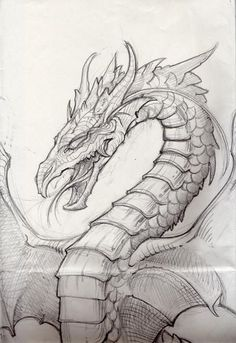 I had a friend in orchestra who was good at drawing dragons (nod) oh and  this picture is awesome