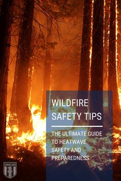 Wildfires and heatwaves kill hundreds in the U.S. each year. Read our guide on wildfire safety tips and precautions to minimize the damage to your property. #wildfire #fire #tipsfire #guide #survival #preparadness