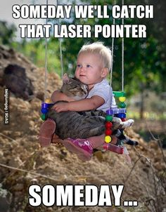 We will catch that laser point one day! Baby and cat funny