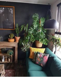 New living room dark green couch rugs Ideas Spacious Living Room, New Living Room, Living Room Sofa, Living Room Interior, Living Room Decor, Living Spaces, Dark Green Living Room, Dark Green Couches, Dark Green Walls