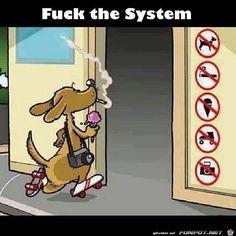 Scheiß aufs System ;)