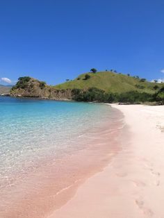 The magenta shade of the pink beach in Komodo Island. Photo by Indra Febriansyah.