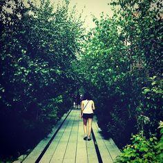 Spending the weekend in #NYC #highlinepark #eidon #eidonsurf #highline #park #walking #iloveny #love #trees #lifeisswell #girl #beautiful #livetravelsurf