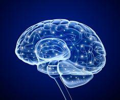 Így oldhatod ki leggyorsabban a húgysavat a testedből, hogy megszűnjön az ízületi fájdalom és köszvény! - Funland Good Mental Health, Brain Health, Healthy Brain, Lion Illustration, Digital Illustration, Brain Painting, Deer Sketch, Brain Vector, Red Artwork