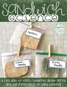 Two week science unit about germs and the importance of hand washing! Perfect for back to school or science fair projects!
