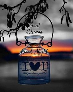Good Night Images Hd, Good Night Quotes, Evening Quotes, Good Night Greetings, Good Morning Good Night, Beautiful Roses, Sweet Dreams, Inspirational Quotes, Board