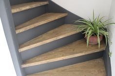 - For my Home - Rope Shelves, Wooden Shelves, Diy Room Decor, Wall Decor, Home Decor, Casa Clean, Hardwood Floors, Flooring, Carpet Stairs