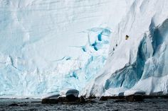 xavier-de-le-rue-snowboard-iceberg-antarctique.jpg (550×366)