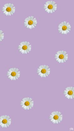 Flowers Wallpaper Desktop Life Ideas For 2019 Daisy Wallpaper, Lit Wallpaper, Flower Background Wallpaper, Flower Phone Wallpaper, Summer Wallpaper, Wallpaper For Your Phone, Wallpaper Iphone Disney, Purple Wallpaper, Aesthetic Pastel Wallpaper