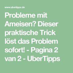 Probleme mit Ameisen? Dieser praktische Trick löst das Problem sofort! - Pagina 2 van 2 - UberTipps