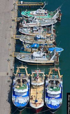 Premier port de pêche français avec une flottille diversifiée de près de 150 bateaux.Plus de 70 espèces différentes débarquées et vendues à la Halle à Marée chaque jour.Boulogne-sur-Mer est aussi un centre européen des Produits de la Mer avec plus de 140 entreprises.Premier French fishing port with a diverse fleet of nearly 150 ships. Over 70 different species landed and sold in fish market every day. Boulogne-sur-Mer is a European center of Seafood with more than 140 companies.