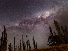 Get the facts about Matariki – a star cluster known worldwide and treasured in Aotearoa New Zealand. Fun Activities For Kids, Book Activities, Next New Moon, Star Facts, Hawaiian Names, The Pleiades, Six Sisters, Winter Sky, Star Cluster