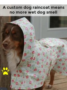 Your dog might not mind a hood. However, with or without a hood, a dog raincoat can help. Dog Smells, Dog Raincoat, Dog Coats, Dogs, Coats For Dogs, Pet Dogs, Doggies