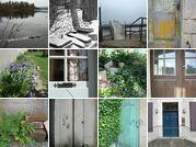 Flickr. Sur Flickr j'archive, je classe, je range, je cherche, je dialogue, je demande, j'emprunte, je partage, je creativecommonise… Photo And Video, World, Plants, Places, The World, Plant, Planets