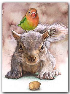 The Baby Squirrel Print Squirrel Art, Cute Squirrel, Baby Squirrel, Squirrels, Animal Paintings, Animal Drawings, Art Drawings, Watercolor Animals, Watercolor Art