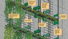 Basic Wall Design | GSky Living Green Walls