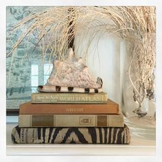 Simple vignette of books & a shell - Maura Endres