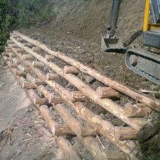 http://www.silvanocostruzioni.it/119__Palificate_in_legno