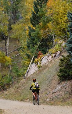 Cruising through the Santa Fe National Forest.    High Rolling: Mountain Biking In Northern New Mexico    With multiple mountain ranges crisscrossed by quality trails, New Mexico is full of secret stashes for mountain-biking enthusiasts. But with the sport's international World Summit coming to Santa Fe next month, the state is poised to become the Southwest's next hot mountain-biking destination.  By Aaron Gulley  http://nmmagazine.com/mountainbiking_September12.php