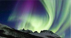 aurora borealis :: alaska