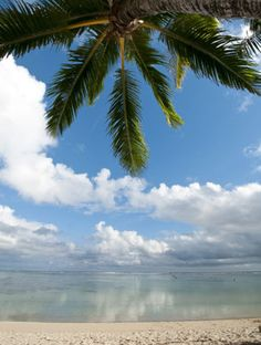 Paradise awaits you in the Cook Islands