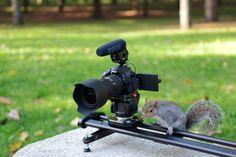 Light and smooth for everyone. SmartSLIDER Reflex equipped with Nikon D5300 and RØDE Microphones moved by a little squirrel.