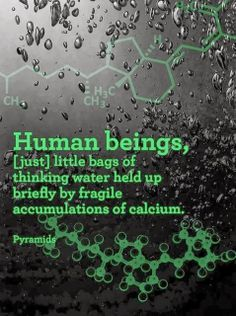 Human beings Just little bags of thinking water held up briefly by fragile accumulations of calcium | Anonymous ART of Revolution