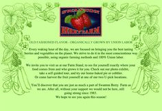 swanton berry farm. south of Santa Cruz on the Pacific Coast Hwy. the BEST strawberries and preserves.