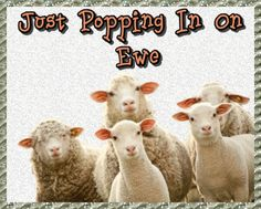Cute good morning card to check up on the one 'ewe' love. Free online Checking In On Ewe ecards on Everyday Cards Morning Hugs, Good Morning Cards, Cute Good Morning, Good Morning Flowers, Morning Wish, Humor Quotes, Funny Quotes, Healing Wish, Cute Frogs