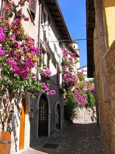 Limone, Lago di Garda, Italy.  One of my favourite places on Lake Garda, truly beautiful. Brescia Lombardy
