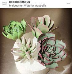 Suculent Rustic Cake, Succulents, Plants, Succulent Plants, Flora, Planters