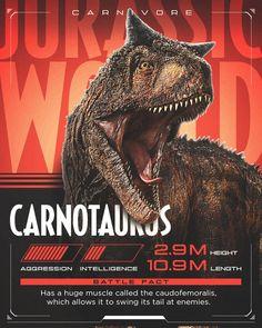 Carnotauro Jurassic World Fallen Kingdom Carnotauro Jurassic World Fallen Kingdom Jurassic Park Poster, Jurassic Park Trilogy, Jurassic World 3, Jurassic World Dinosaurs, Jurassic World Fallen Kingdom, Dinosaur Drawing, Dinosaur Art, Dinosaur Wallpaper, Spinosaurus