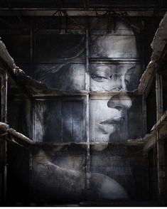 Australian street artist Rone's new series of impressive murals is titled The Alpha Project.