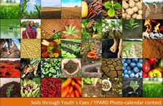 YPARD photo-calendar contest - Soils through youth's eyes
