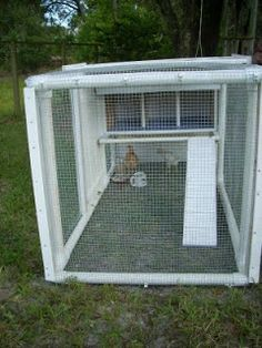Lightweight PVC chicken tractor... Would be easy to move and relatively cheap.