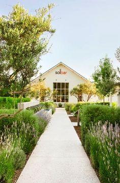 Solage Calistoga Resort | Backen, Gillam & Kroeger Architects | Napa Valley, CA