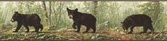 Cubs Wallpaper, Black Bear Cub, Wallpaper Borders, Bear Cubs, Border Design, Brown, Nursery, Animals, Decor