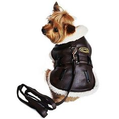 """New Brown and Black""""Bomber"""" Doggie Coat and Matching Leash. The Brown Faux Leather Bomber has a Classic Style, with Matching Leash and Ensign-ea that says """"CO-PILOT"""" on the front. Made by Doggie Design.   eBay!"""