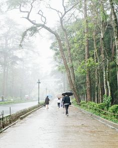 ° It was a foggy, rainy afternoon in the so-called city of pines. We just finished taking pictures at the fog-laden The Mansion… Taking Pictures, Philippines, Country Roads, Mansions, City, Travel, Viajes, Manor Houses, Villas