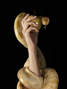 Eve, the apple and the serpent. Think upon this iconic triad. The possibilities for involvement are multitudinous.