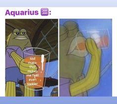 27 Hilarious Memes Just For Laughs Aquarius Quotes, Aquarius Horoscope, Zodiac Signs Aquarius, Aquarius Facts, Zodiac Sign Traits, Zodiac Signs Astrology, Zodiac Memes, Memes Humor, Funny Humor