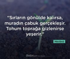 mevlana-sozleri-51 Cool Words, Wise Words, Good Sentences, Lost In Translation, Strong Love, Sweet Quotes, Words Worth, Benjamin Franklin, More Than Words