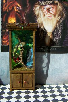 Professor Quirrell's iguana enclosure!