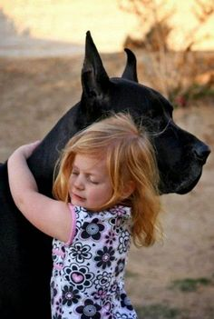 Little Girl Hugging Her Great Dane Dog. Dogs And Kids, Animals For Kids, Dogs And Puppies, Cute Animals, Doggies, Weimaraner, Doberman, Gentle Giant Dogs, Huge Dogs