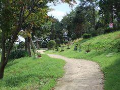부산서구 등산겸 등산아닌 산책과 민속문화, 식물 구경을 한번에 해버린 구덕문화공원